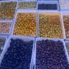 Olives Varietat