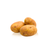 Patata Kennebec